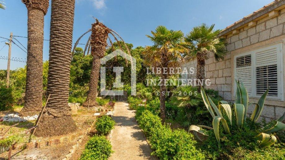 Šarmantna kamena kuća u samom srcu Lopuda / LJETNI DOM