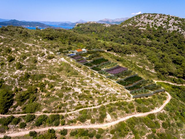 For sale ruins with spacious lot (5700m2) on great location on the island of Lopud / STEAL
