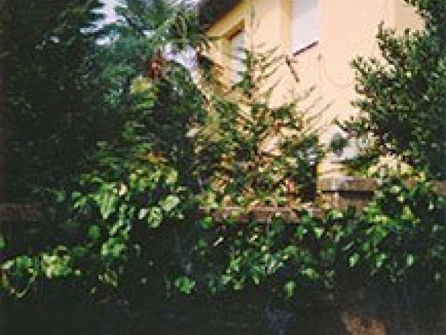 P R I L I K A - na TRSATU u mirnom okruženju nalazi se obiteljska kuća okružena zelenilom koja vas budi cvrkutom ptica MJESTO NA KOJEM MOŽETE GRADITI SVOJ DOM