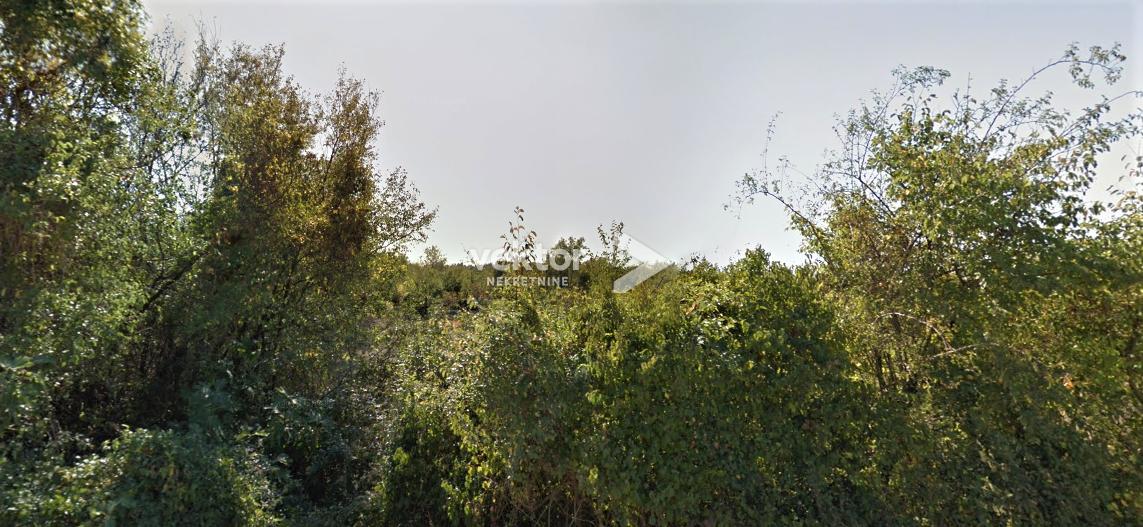 Poljoprivredno zemljište u Istri